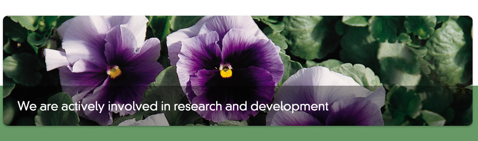 we are actively involved in research and development